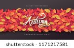 Autumn Leaves Background...