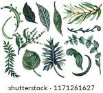 watercolor illustration... | Shutterstock . vector #1171261627