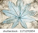 leaf print on natural style...   Shutterstock . vector #1171292854