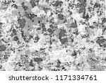 the texture is black and white... | Shutterstock . vector #1171334761