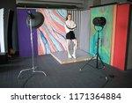 model posing in a professional... | Shutterstock . vector #1171364884