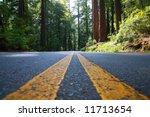 empty road in giant redwood... | Shutterstock . vector #11713654