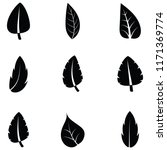 leaf icon set | Shutterstock .eps vector #1171369774