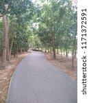 road in the park   Shutterstock . vector #1171372591