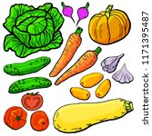 vector set fresh garden... | Shutterstock .eps vector #1171395487