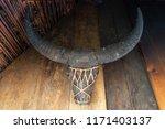 philippines buffalo carabao...   Shutterstock . vector #1171403137