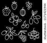 superfood berries icon set... | Shutterstock .eps vector #1171421944