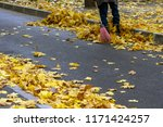 cleaning of autumn leaves | Shutterstock . vector #1171424257