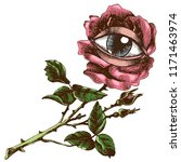 rose and eye. hand drawn vector ... | Shutterstock .eps vector #1171463974