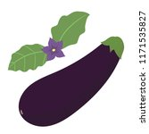 cute hand drawn object eggplant ... | Shutterstock .eps vector #1171535827