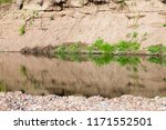 a small and shallow river and a ...   Shutterstock . vector #1171552501