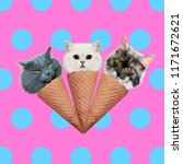 cats ice cream mix....   Shutterstock . vector #1171672621