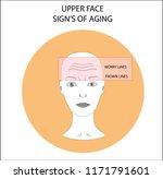 girl's face scheme... | Shutterstock .eps vector #1171791601