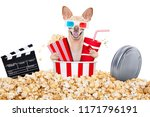 chihuahua dog going to the... | Shutterstock . vector #1171796191
