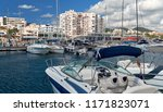 marina of ibiza island. port of ... | Shutterstock . vector #1171823071