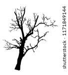 tree vector isolated on white...   Shutterstock .eps vector #1171849144
