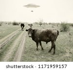 Stock photo landscape with cows and ufo 1171959157