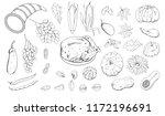 vector set for thanksgiving day ... | Shutterstock .eps vector #1172196691