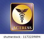 shiny badge with medicine icon ... | Shutterstock .eps vector #1172239894