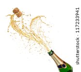 celebration theme with... | Shutterstock . vector #117233941