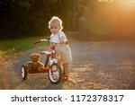 cute toddler child  boy ... | Shutterstock . vector #1172378317