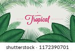 summer tropical foliage... | Shutterstock .eps vector #1172390701