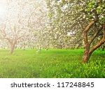 Beautiful Blooming Of...