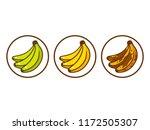 banana ripeness vector... | Shutterstock .eps vector #1172505307