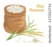 sack of rice isolated on white. ... | Shutterstock .eps vector #1172512714