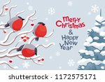 funny bullfinches and rowan... | Shutterstock .eps vector #1172575171