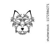 yorkshire terrier   isolated... | Shutterstock .eps vector #1172586271