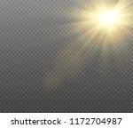 sunlight a translucent special...   Shutterstock .eps vector #1172704987