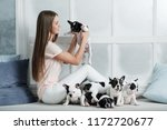 Stock photo a beautiful young girl sits on the windowsill of a white window and holds a lot of small puppy of a 1172720677