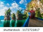 adventure man traveler relaxing ... | Shutterstock . vector #1172721817
