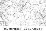 black and white stripes in... | Shutterstock .eps vector #1172735164