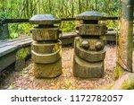 biological reserve huilo huilo  ... | Shutterstock . vector #1172782057
