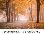 small fog is in autumn in a... | Shutterstock . vector #1172970757