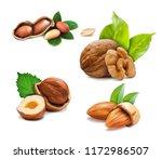 vector illustration mix of... | Shutterstock .eps vector #1172986507
