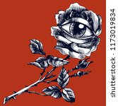 rose and eye. hand drawn vector ...