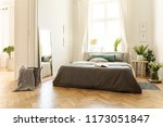 a natural bright apartment... | Shutterstock . vector #1173051847