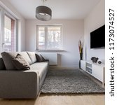 small living room with sofa ...   Shutterstock . vector #1173074527