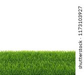green grass white background ... | Shutterstock .eps vector #1173103927