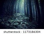 Path Through A Dark Forest....