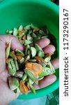 close up view of petai  bitter... | Shutterstock . vector #1173290167