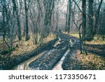 off road track in autumn forest.... | Shutterstock . vector #1173350671