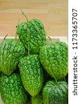 balsam apple bitter cucumber or ... | Shutterstock . vector #1173365707