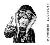 monkey rapper dressed in the... | Shutterstock .eps vector #1173434764