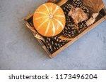 autumn still life from tray... | Shutterstock . vector #1173496204