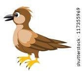 illustration sparrow on white...   Shutterstock .eps vector #117355969