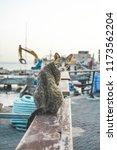 tel aviv  israel. july 25  2018.... | Shutterstock . vector #1173562204